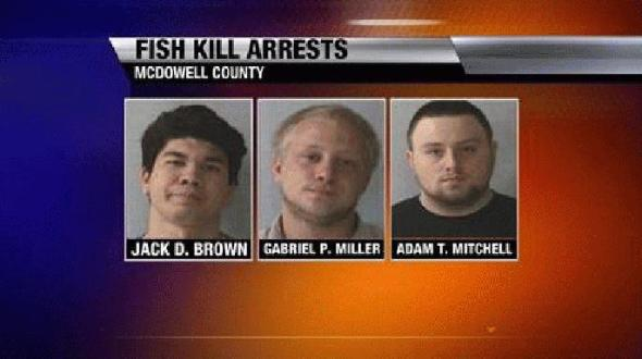 0410-fish-kill_20495