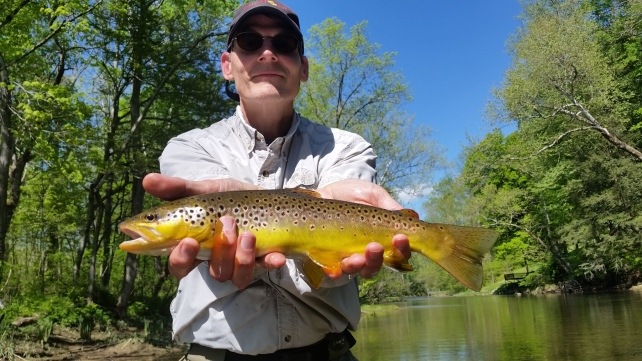 Dr Jeff Hutchison with a nice brown we stalked and sight fished
